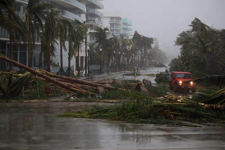 Sous les projecteurs: «Irma»