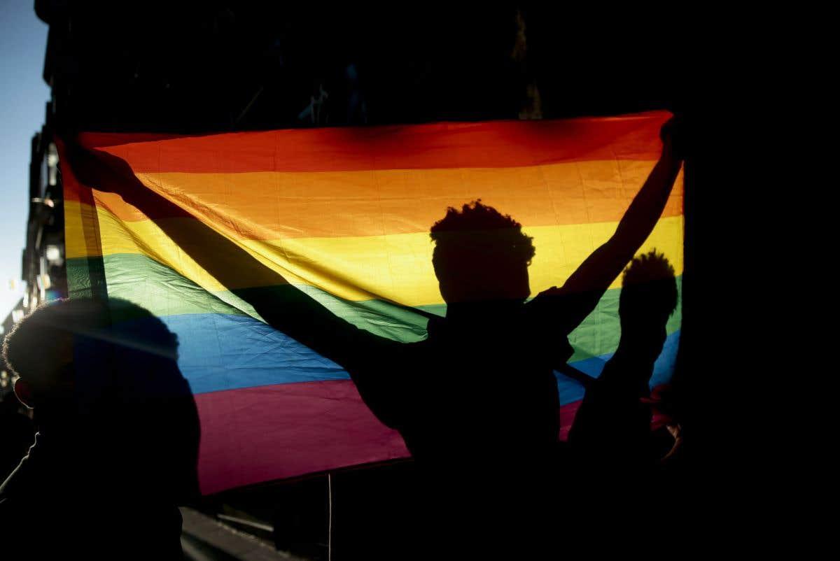 Fiertés LGBT