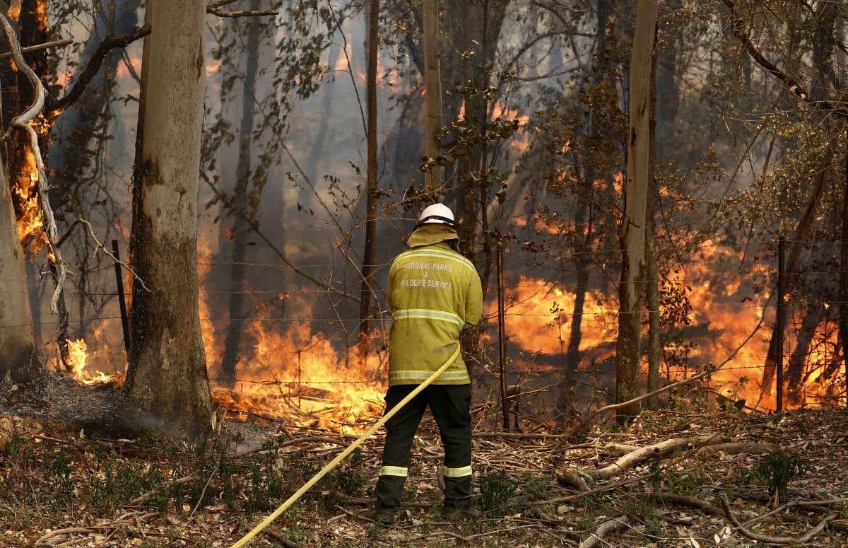 Un oeil sur les feux en Australie