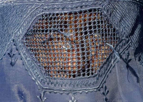 En 2011, la position du Barreau sur la loi concernant le projet d'amphithéâtre de Québec de Pierre Karl Péladeau et Régis Labeaume avait été jugée mal fondée. Aujourd'hui, il s'oppose sans subtilité à l'interdiction de la burqa.