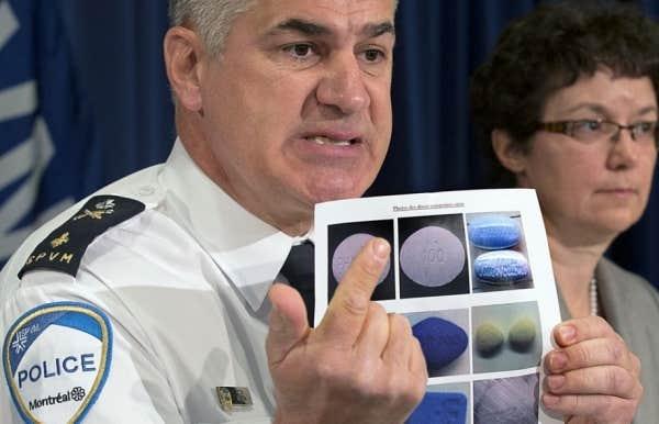 En mai 2013, la SPVM a saisi d'importantes quantités d'ecstasy, d'oxycodone, de speed, de Viagra et de Cialis de contrefaçon et de stéroïdes.