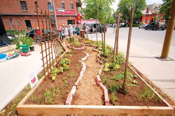 L'un des jardins communautaires d'Edible Incredible, lié au groupe d'action Transition NDG, à Notre-Dame-de-Grâce.