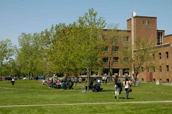 Un DEC bilingue pour séduire les étudiants francophones  ~ College Bois De Boulogne Montreal