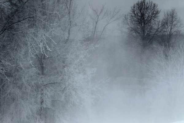 Scène d'hiver, Montréal, 6 janvier 2012