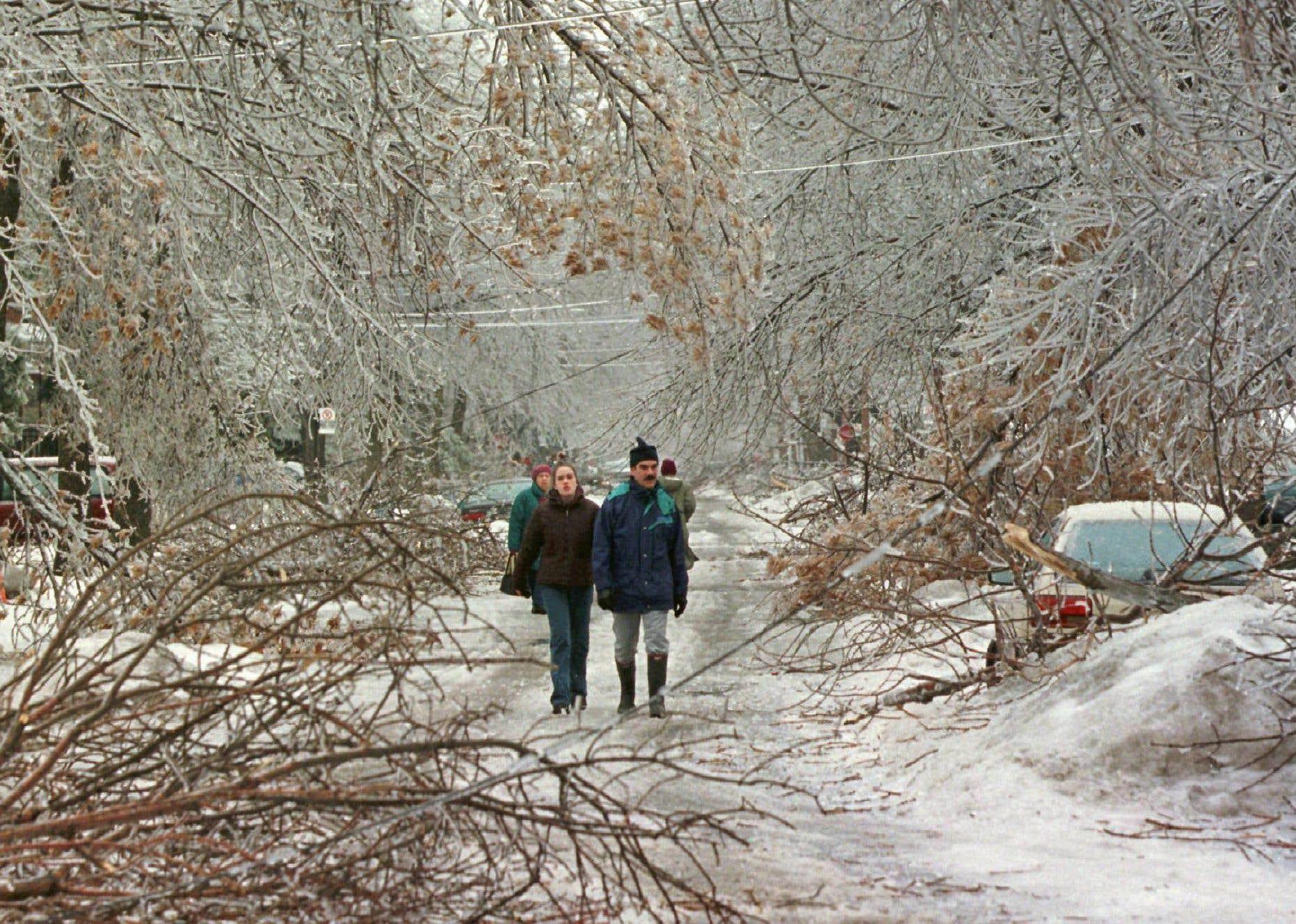 Des résidants de Montréal constatent l'ampleur des dégâts à la suite d'une des premières journées de précipitations de pluie verglaçante.