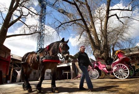 Le Horse Palace, qui n&rsquo;abrite plus de huit chevaux, a &eacute;t&eacute; vendu &agrave; deux promoteurs immobiliers.<br />