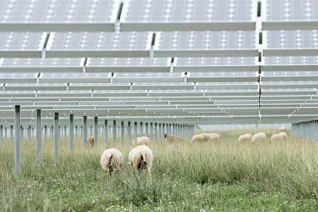 Que ce soit sur les toits d'habitations ou dans les champs, les panneaux solaires font partie du paysage en Allemagne depuis des années.