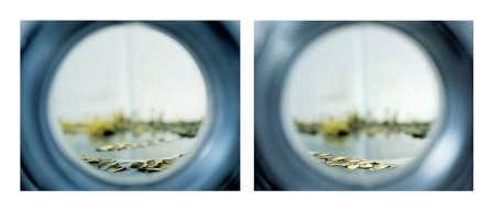 Paysage approximatif (diptyque no. 2), 2008, impression jet d'encre, de Catherine Bodmer