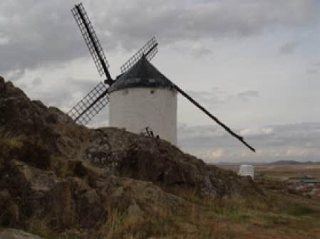 Dans les plaines de la Mancha, célèbre pour ses moulins, la culture du safran va bon train.