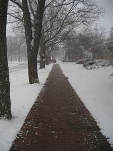 La neige ne dure pas sur les trottoirs de Holland, Michigan, ville des trottoirs chauffés.