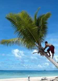L&rsquo;&icirc;le de Tuvalu, en Oc&eacute;anie, une des premi&egrave;res victimes potentielles des d&eacute;r&egrave;glements du climat.<br />