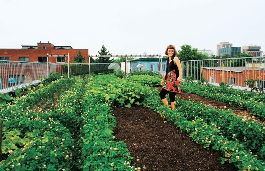 En plus des conférences, l'École d'été sur l'agriculture urbaine organise des visites comme celle du toit du Santropol.