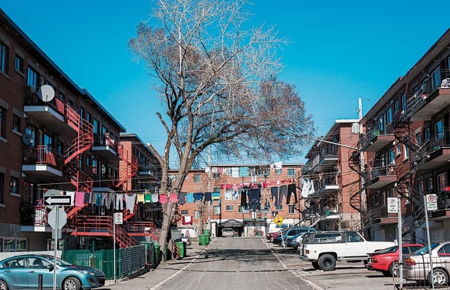 Le petit arrondissement de Montréal-Nord - à peine 11,1 km2 - abrite aujourd'hui 81 000 habitants, dont 30 000 immigrants, en grande majorité haïtiens. Depuis une dizaine d'années, les immigrants maghrébins sont venus diversifier davantage le portrait. Le taux de chômage y était de 14 % en 2011, contre 10 % pour Montréal.