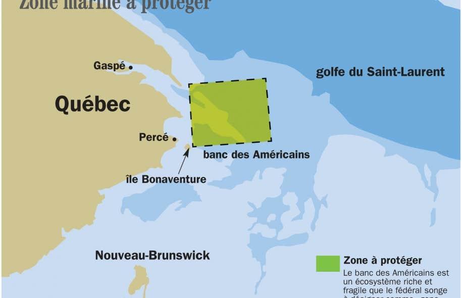 Le banc des Américains est situé tout juste à l'est de la pointe de la Gaspésie. La zone maritime est d'une superficie de 1050 km2.
