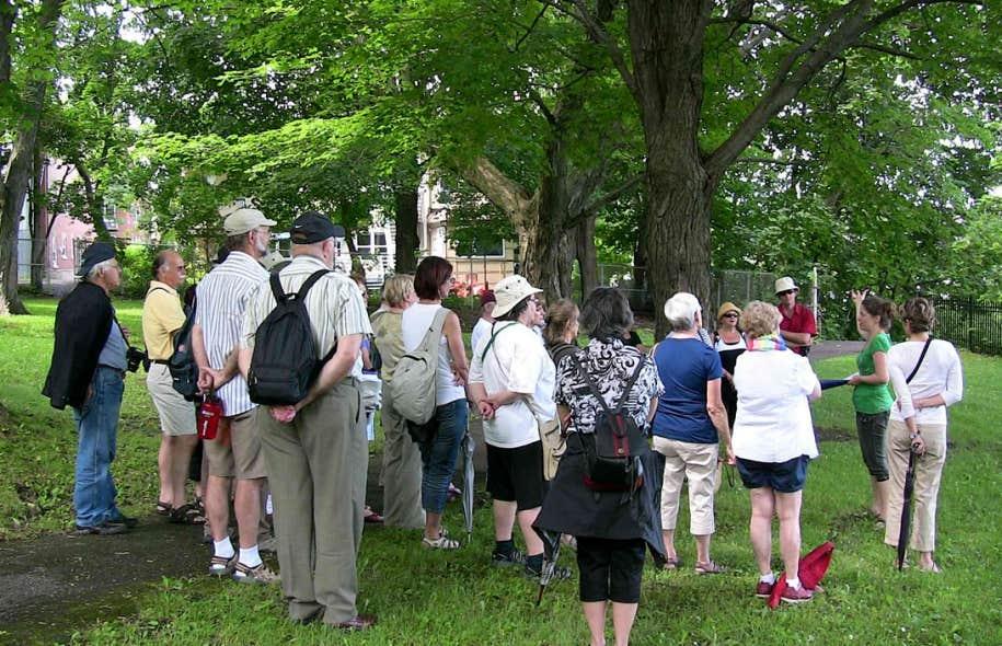 La Promenade des écrivains propose une série de balades d'environ deux heures chacune qui prennent racine dans les différents quartiers de la ville.