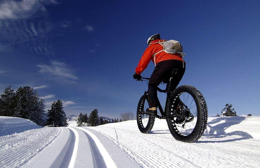 Disponibles au Québec depuis le tournant des années 2000, c'est surtout depuis la dernière saison froide que les fat bikes ont vu le nombre de leurs adeptes se multiplier.