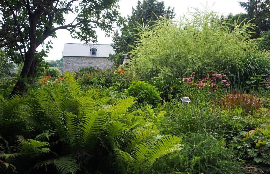 Le jardin derri re les murs le devoir for Derriere les murs de mon jardin