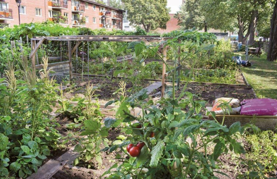 Le programme est il m r pour une r forme le devoir for Restaurant le jardin en ville