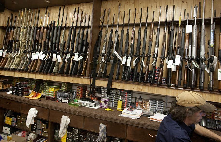 <p>Avec le projet de loi 64, le gouvernement souhaite instaurer un fichier pour immatriculer ces armes, a déclaré M.Moreau en Chambre.</p>