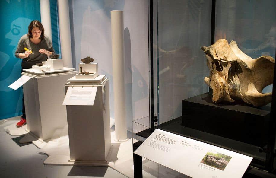 Les artefacts exposés ont été recueillis lors de fouilles menées dans quelque 10000 sites québécois.