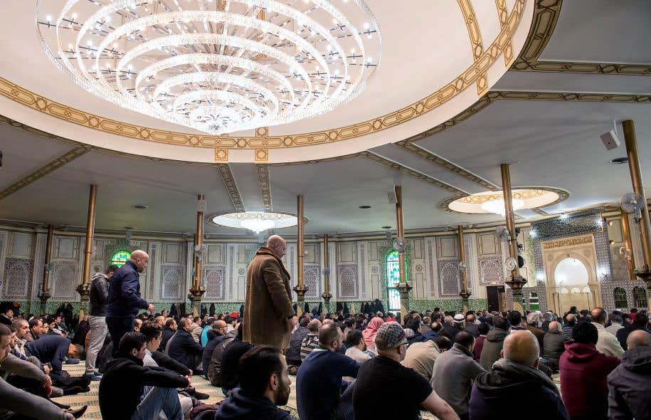 La belgique foyer du djihadisme le devoir for Le foyer luxembourg