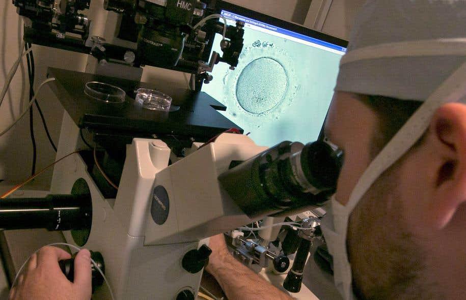 Un embryologiste effectue une observation dans une clinique de fertilité à New York.