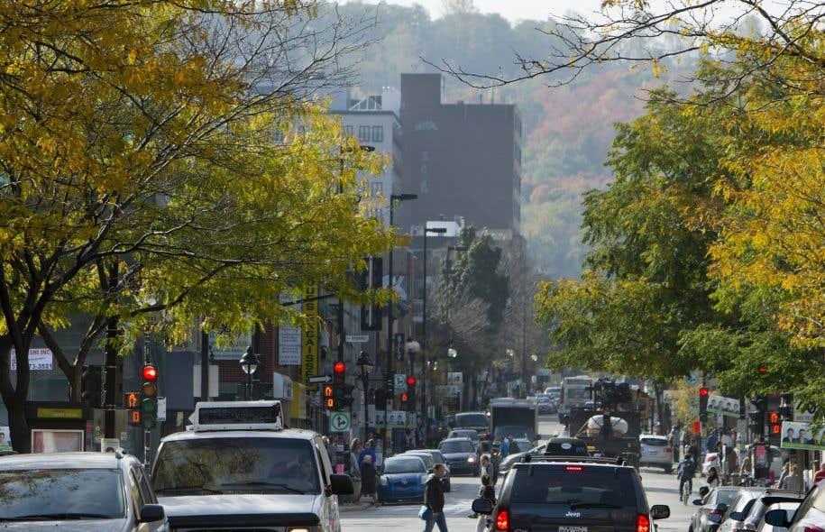 Tranquille, dynamique, vert, central… D'un pâté de maison à l'autre, les rues semblent pareilles, mais ne se ressemblent pas.