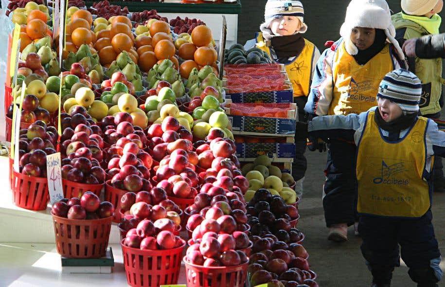 La révision du Guide alimentaire fait partie d'une stratégie plus large pour une saine alimentation.