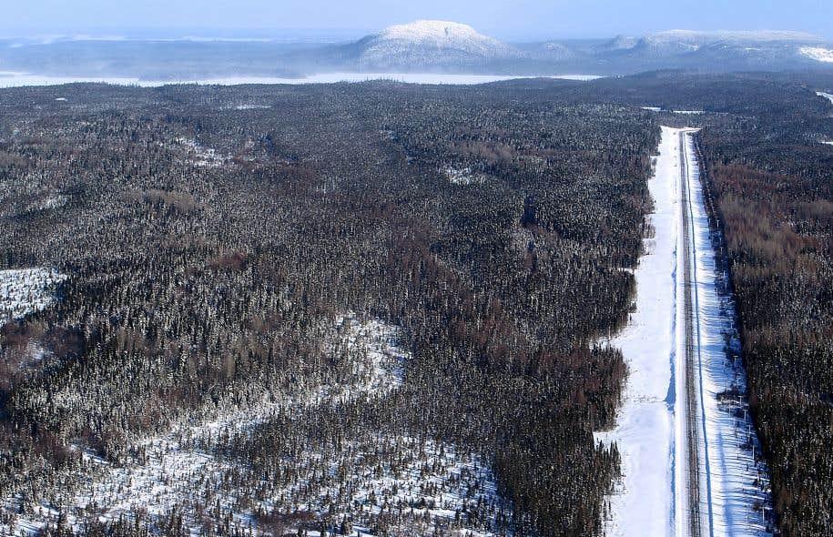 Yänariskwa, une jeune scientifique, «se sauve» en esprit dans le Grand Nord québécois.