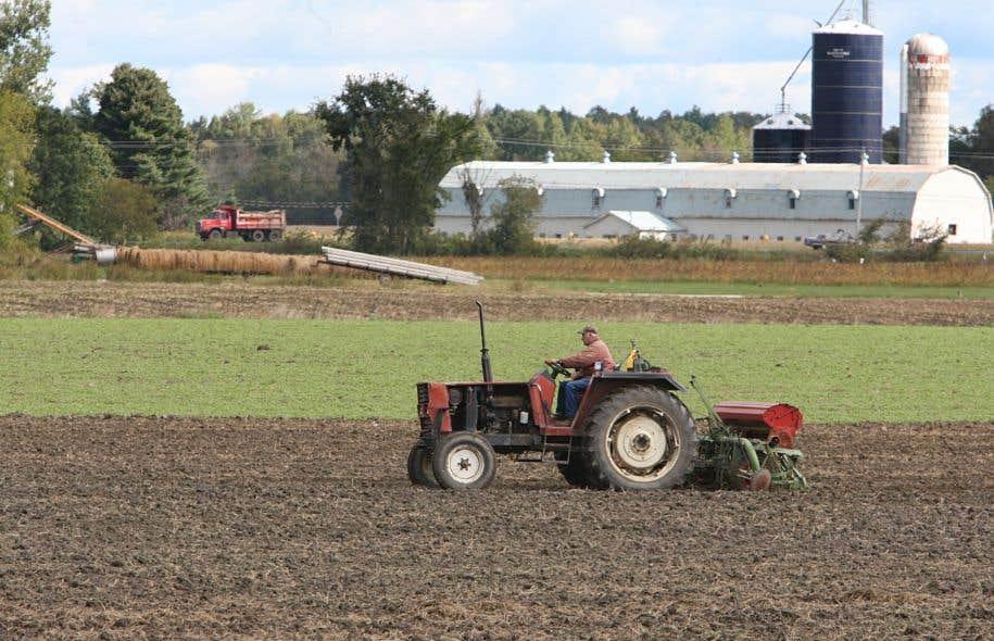 Selon l'Union des producteurs agricoles, l'adoption du règlement tel que rédigé constituerait ni plus ni moins que la mort de la Loi sur la protection du territoire et des activités agricoles.