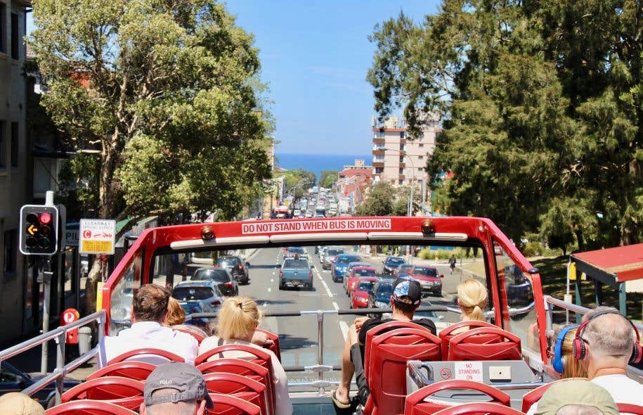 À Sydney, ville à la topographie accidentée s'il en est, on serait bien mal avisé de snober le bus touristique, meilleur moyen d'en avoir rapidement une vue d'ensemble.