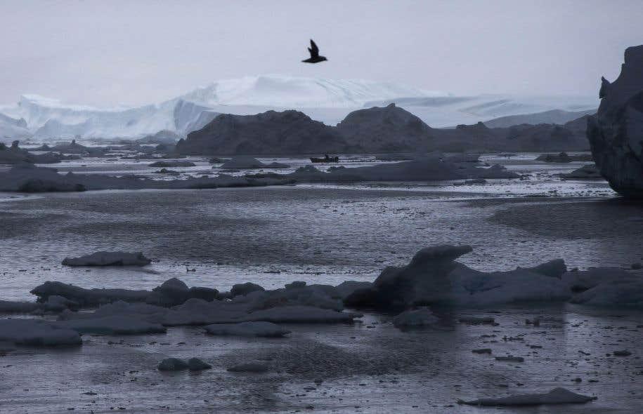 Au moins trois fois à ce jour cet hiver, l'Arctique a connu l'équivalent polaire d'une vague de chaleur, selon l'Organisation météorologique mondiale.
