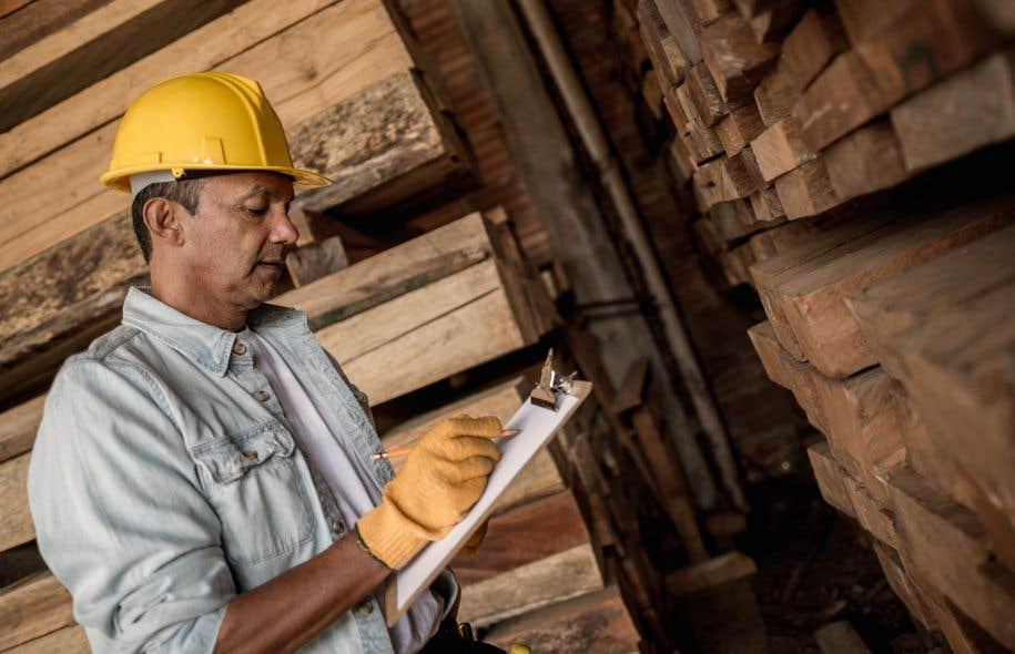 Pour une cinquième année, le cégep de Saint-Félicien n'offrira pas son programme en transformation des produits forestiers par manque d'inscriptions.