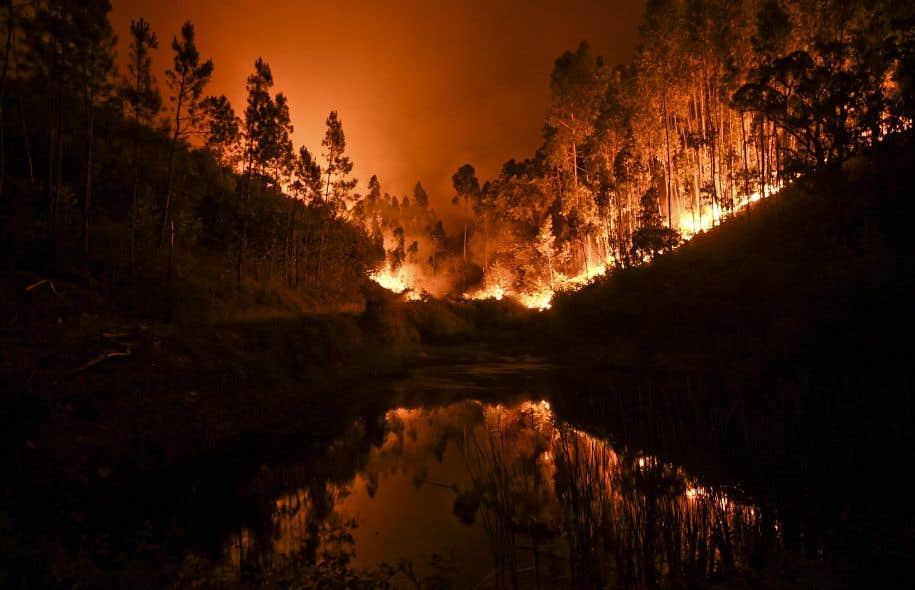 <p>Malgré une légère baisse des températures caniculaires, le feu, qui s'est déclaré samedi après-midi à Pedrogao Grande dans le centre du Portugal, continue de faire rage.</p>