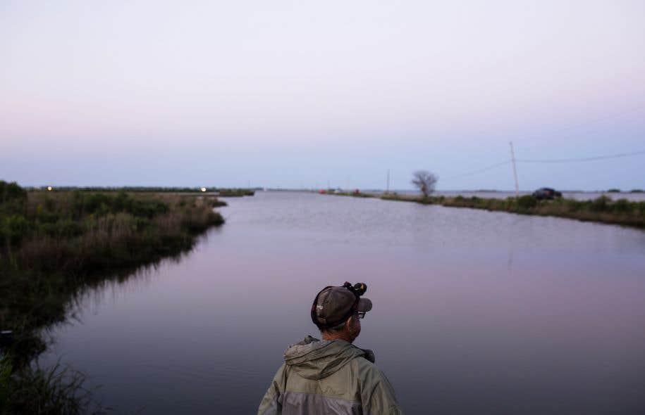 Les États du sud (ci-dessus, la Louisiane) souffriront particulièrement de l'absence de mesure pour lutter contre le réchauffement, selon l'étude.