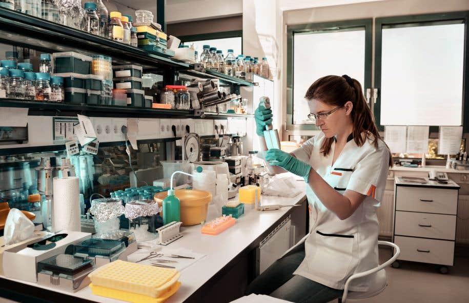 Les 15 à 35 chercheurs sélectionnés en fin de course auront un an pour entrer en poste.