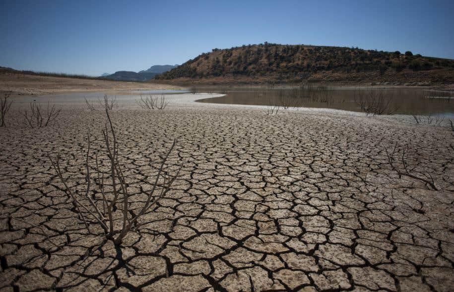Le dernier rapport annuel sur «l'État du climat» dresse un portrait des plus sombres de notre planète, après deux années consécutives de températures globales records.