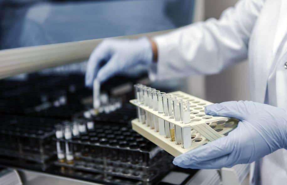 La molécule klotho circule dans le sang de tout humain, en plus ou moins grandes concentrations selon le profil génétique.