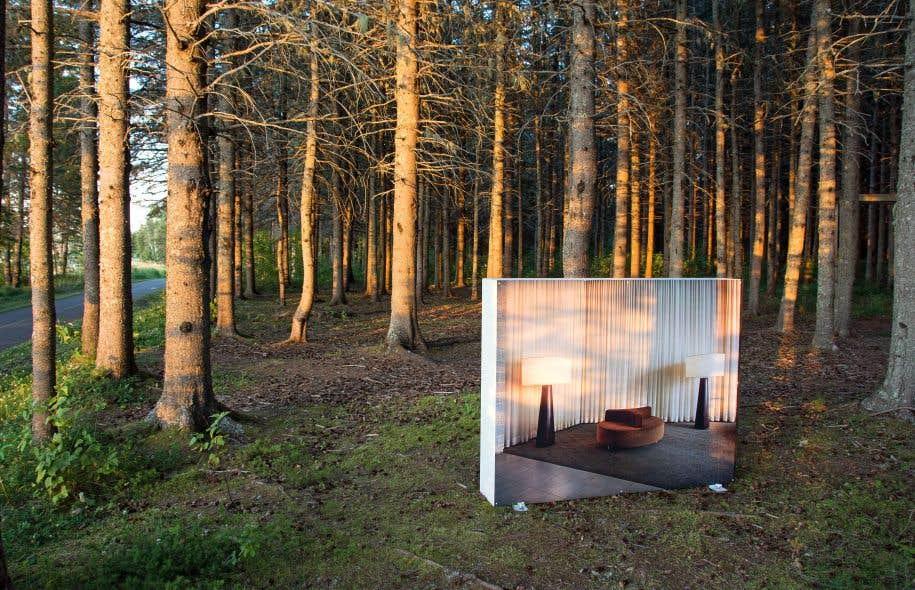 Lynne Cohen, «Œuvres récentes (Recent Works)»