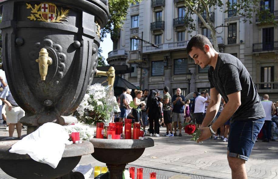 Un homme dépose une rose à la fontaine Canaletas, sur le boulevard Rambla à Barcelone, en mémoire des victimes de l'attaque de jeudi.