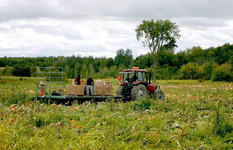 La menace exposée par l'Union des producteurs agricoles serait d'aussi grande ampleur dans les couronnes nord et sud de Montréal.