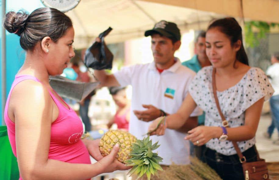 Quelque 45% des étudiants qui ont suivi et terminé PROGA-Jeunes, une formation en agroécologie offerte par SUCO au Nicaragua, étaient des femmes.