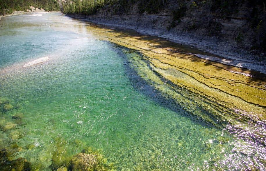 Une eau cristalline coule dans la majestueuse rivière Jupiter qui sillonne l'île d'Anticosti.