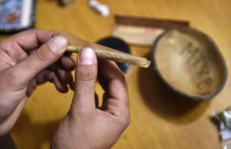 Au cabinet de la ministre déléguée à la Santé publique, Lucie Charlebois, on confirme que les villes auront le loisir de traiter la marijuana comme l'alcool et non comme le tabac si elles le souhaitent.