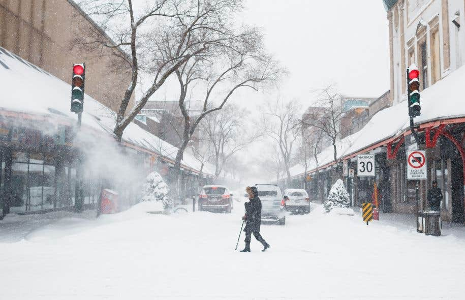 Uniquement à Montréal, il est tombé 36cm de neige.