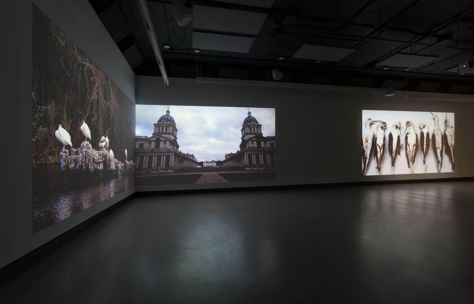 Vue de l'exposition  de Geneviève Chevalier