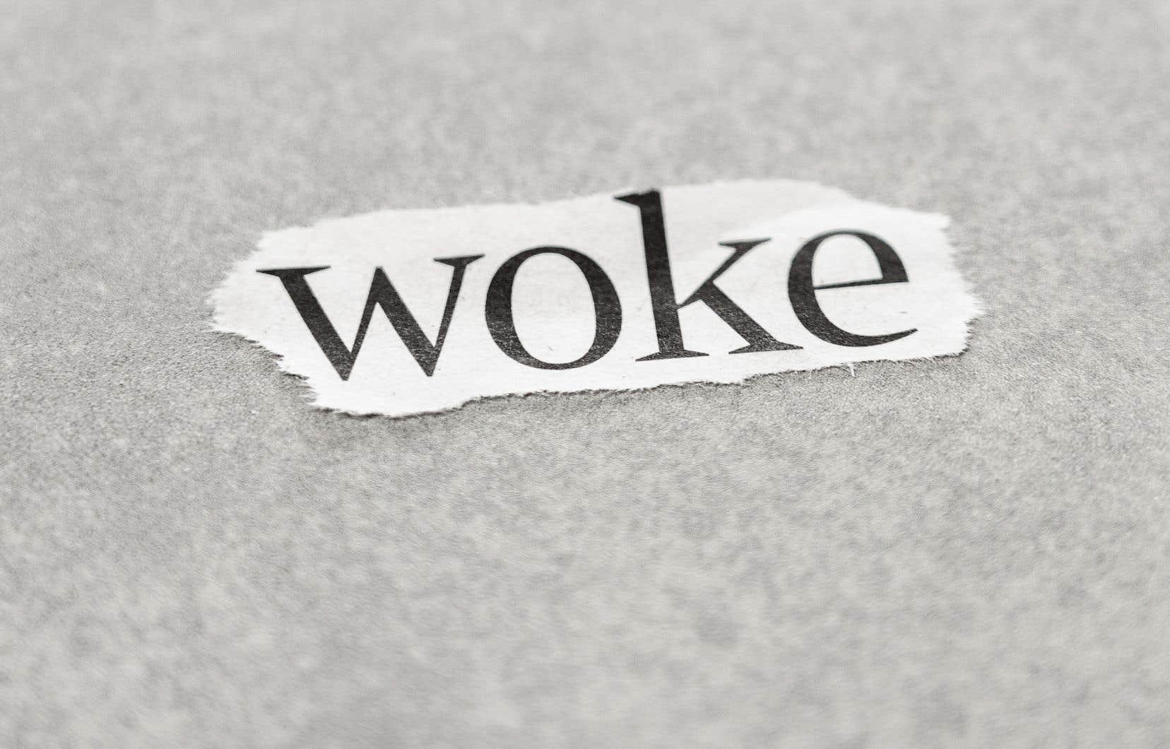 «En résumé, les termes gauchisme radical, diversitarisme, minoritarisme et identitarisme de gauche sont des substituts potentiels du syntagme idéologie woke et du nom wokisme», écrit l'auteur.