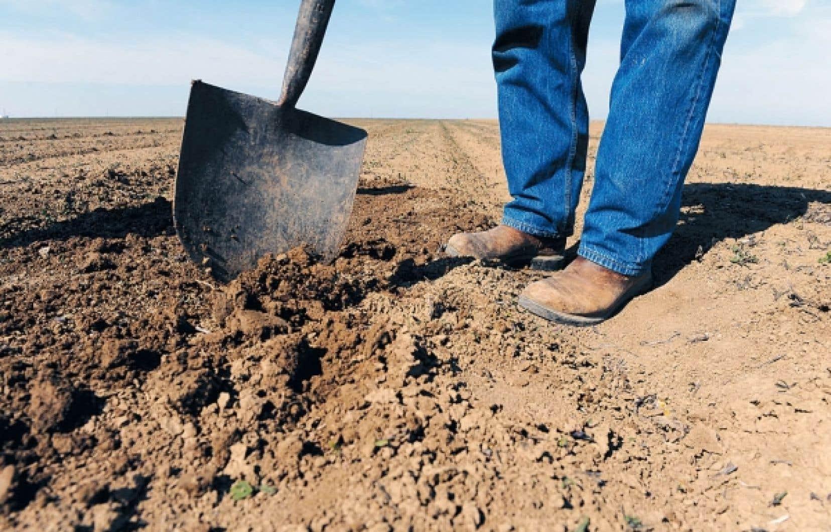 Un fermier examine le sol au cours d&rsquo;une s&eacute;cheresse en Californie, en 1999. L&rsquo;esp&egrave;ce humaine est en passe de rompre l&rsquo;&eacute;quilibre de la Terre.<br />