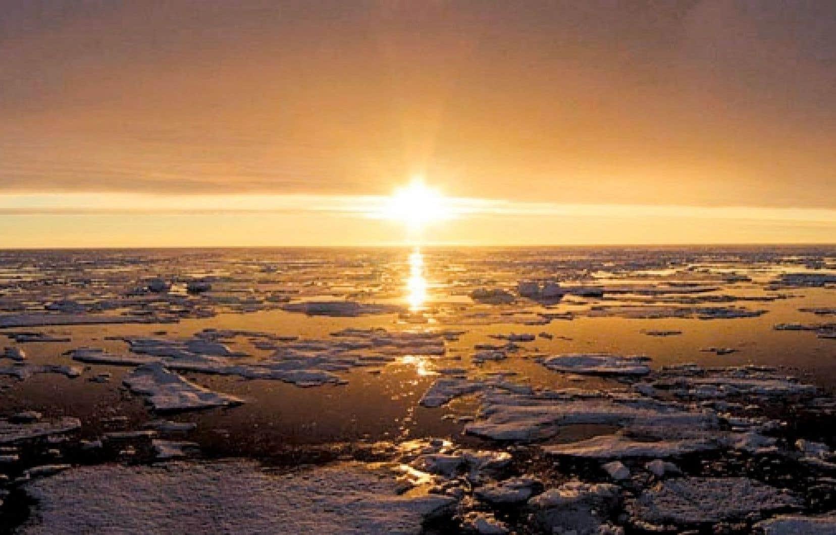L'Arctique est la région qui se réchauffe le plus rapidement sur la planète.