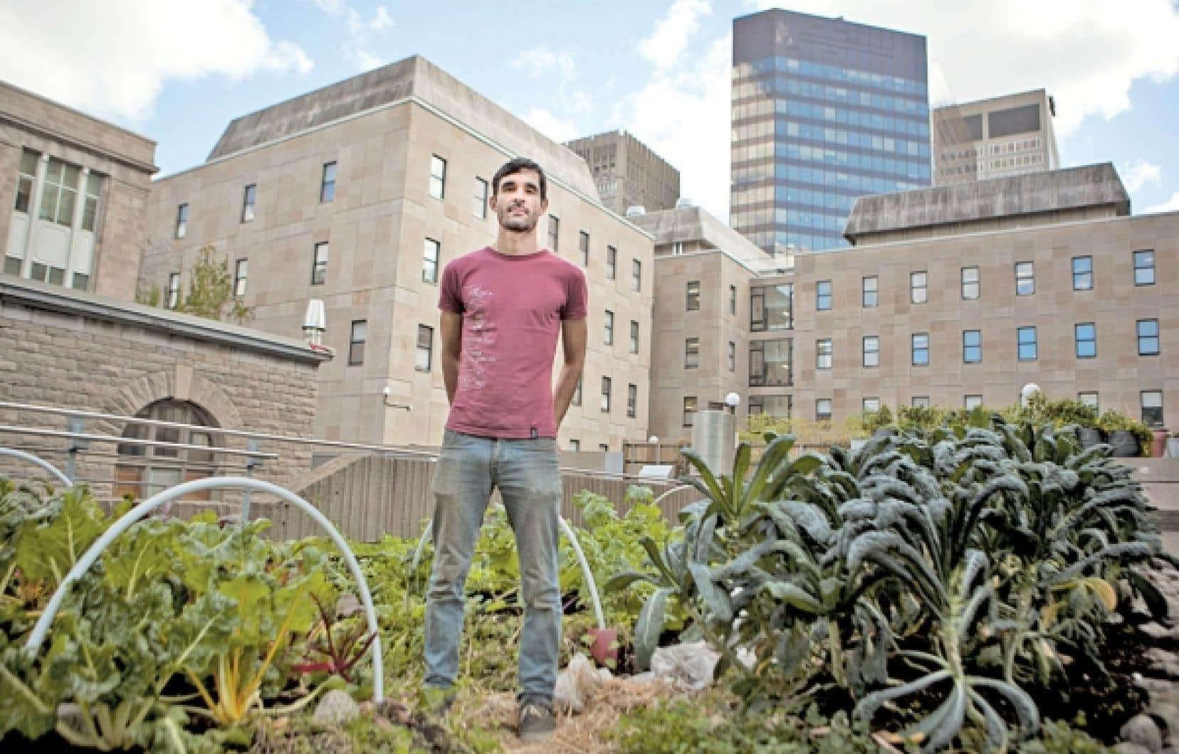 Tim Murphy, directeur de l'agriculture urbaine au Santropol roulant, se réjouit de la tenue du nouvel événement à Montréal, qui permettra de rassembler les producteurs urbains et périurbains. L'organisme communautaire a développé plusieurs jardins, notamment dans l'enceinte de l'Université McGill (notre photo).